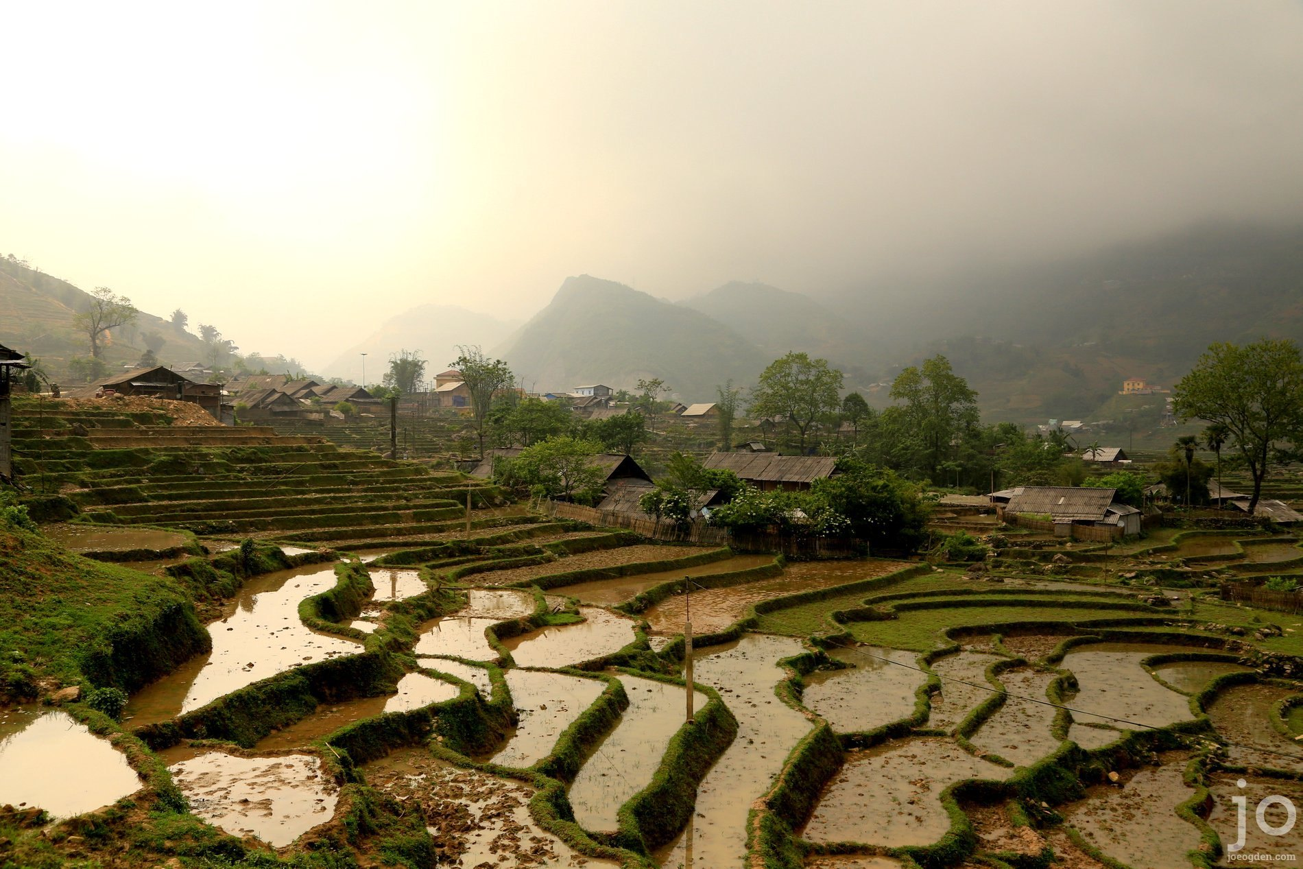 Rice terraces in Sapa, Vietnam