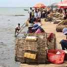 Crab market in Kep, Cambodia